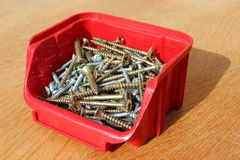 Screws in plastic box Stock Images