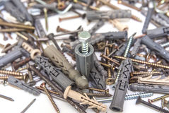 Screws With Plastic Dowels  Royalty Free Stock Images