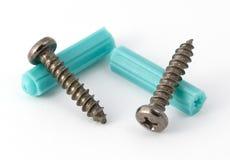 Screws & Plugs. Pair of screws and wallplugs Stock Photos