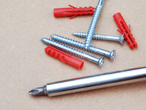 Screws and plugs Stock Photography