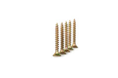 Screws in a row Royalty Free Stock Image