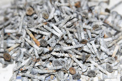 Screws scattered Stock Image