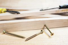 Screws and screw-driver Royalty Free Stock Photos