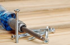 Screws and screwdriver Stock Image