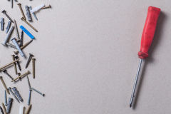 Screws and screwdriver Royalty Free Stock Image