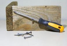 Screws and screwdriver. Stock Image