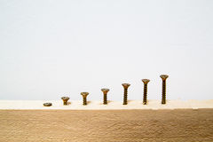 Screws Royalty Free Stock Image