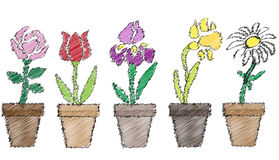 Scribble background with flowers in pots Stock Photos