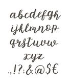 Script font alphabet written with a brush. Vector alphabet. Hand drawn letters and punctuation Stock Photo