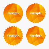 Script sign icon. Javascript code symbol. Triangular low poly buttons with flat icon. Vector Stock Photos