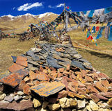 Scripture rocks and prayer flags in Tibet Royalty Free Stock Images