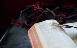 scriptures Royalty-vrije Stock Foto's
