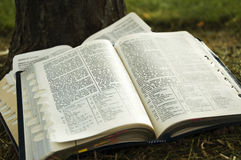 Scriptures Stock Photos
