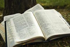 Scriptures Stock Photos