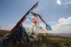 Scriptures van de lama in wind 4 Royalty-vrije Stock Afbeeldingen