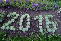 2016 scritto dalle piante Fotografie Stock Libere da Diritti