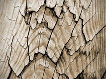 Scrittorio di legno d'annata del granaio del pavimento della plancia Fotografia Stock Libera da Diritti