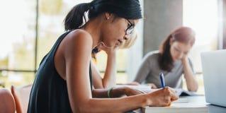 Scrittura della donna con i compagni di classe che studiano nella biblioteca Fotografie Stock Libere da Diritti