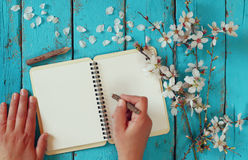 Scrittura della donna sul taccuino in bianco accanto all'albero bianco dei fiori di ciliegia della molla sulla tavola di legno d' Fotografia Stock Libera da Diritti