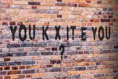 Scrittura di gioco di parole di Brexit sul muro di mattoni Il Regno Unito, Regno Unito, lasciante l'UE? Fotografia Stock