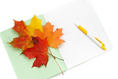 Scrittura-libro, penna e fogli di autunno Fotografia Stock Libera da Diritti