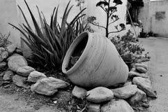 Scriva il giardino a macchina del deserto fuori Immagini Stock Libere da Diritti
