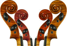 Scroll. Image of the violin scrolls was created from only one scroll Stock Images