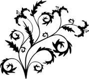 Scroll, cartouche, decor, vector Royalty Free Stock Photos
