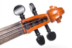 Scroll of classical violin close up Stock Images