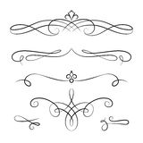 Scroll elements, set of vintage calligraphic vignettes Royalty Free Stock Photo