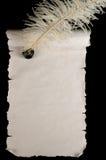 scroll för blankt papper Arkivfoton