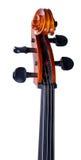 scroll för violoncell s royaltyfri bild