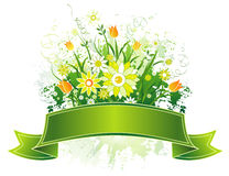 Scroll and flowers, vector Royalty Free Stock Photos