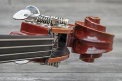 Scroll and nuts on the head of a double bass / contrabass royalty free stock images
