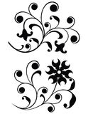 Scroll, ornament, vector Stock Image