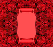 Scroll over red roses background Stock Photos