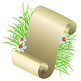 Scroll of paper and green grass Stock Image
