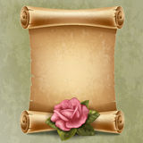 Scroll paper. Vertical old scroll paper with beautiful rose and space for your text Stock Image