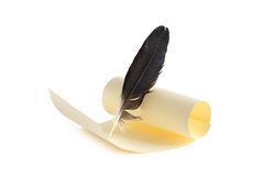 Scroll And Quill Royalty Free Stock Photo