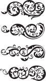 Scroll set vector illustration