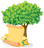 A scroll under a tree. Illustration of a scroll under a tree on a white background Royalty Free Stock Photo