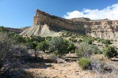 Scrub Land, Book Cliffs, Utah Stock Photography