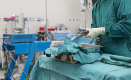 Scrub nurse preparing medical instruments for  surgery Stock Image