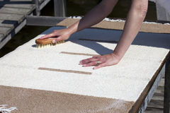 Scrubbing carpet Royalty Free Stock Photos