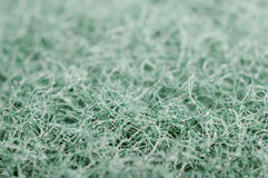 Scrubbing Sponge Macro Texture Royalty Free Stock Photography