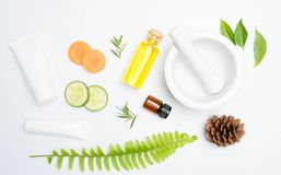 Scrubs with natural ingredients rosemary oli cucumber and leaves on white. Background royalty free stock photo