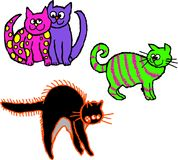 scruffy katter Arkivfoto