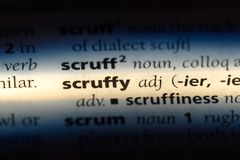 Scruffy. Word in a dictionary.  concept stock images