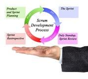 Scrum Development Process. Presenting diagram of Scrum Development Process Stock Photo