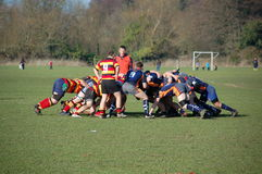 Scrum do rugby Imagens de Stock Royalty Free